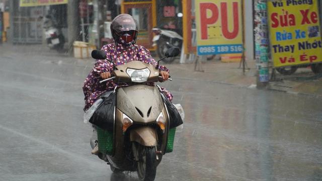 TP HCM đang đón mưa trái mùa và chuỗi mưa lớn  - Ảnh 1.