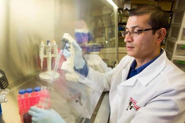 Tiến bộ vượt bậc: Các chuyên gia Mỹ phát minh ra keo dán não, hứa hẹn bước tiến lớn trong giới y học - Ảnh 1.