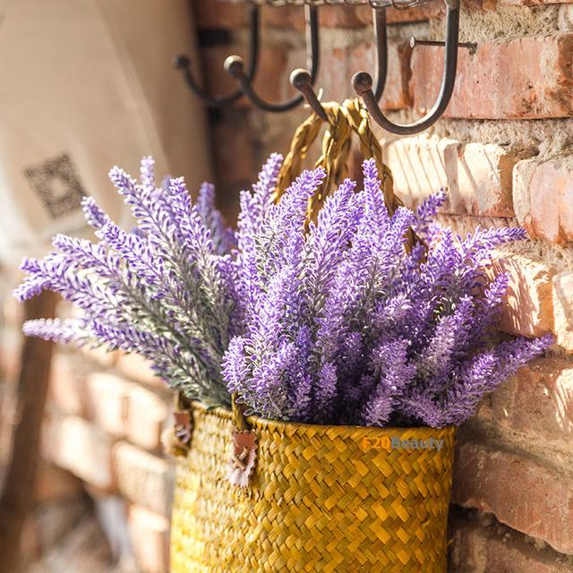 8 loại cây cảnh nên trồng trong nhà bếp vì có khả năng lọc không khí và khử mùi cực tốt - Ảnh 4.
