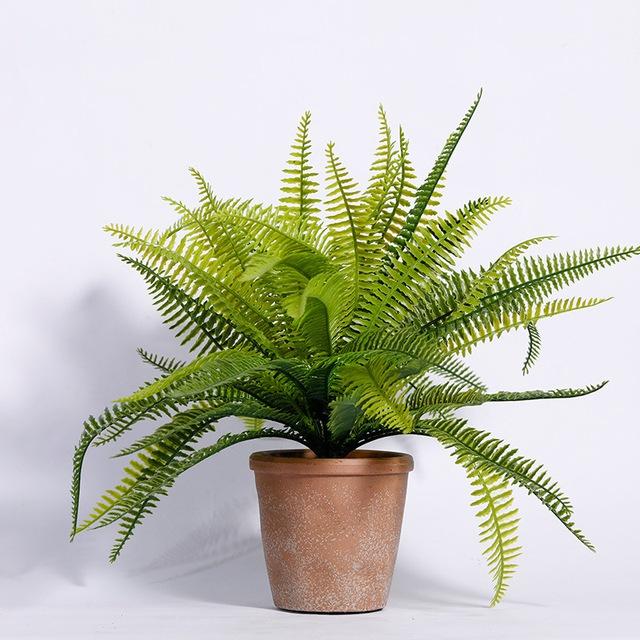8 loại cây cảnh nên trồng trong nhà bếp vì có khả năng lọc không khí và khử mùi cực tốt - Ảnh 7.