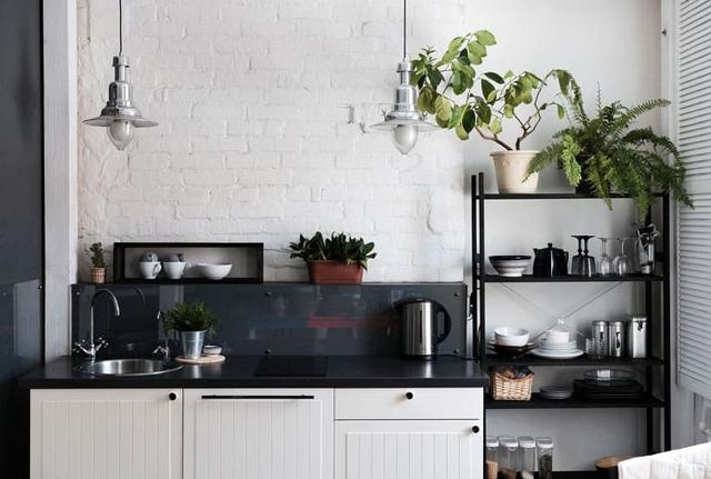 8 loại cây cảnh nên trồng trong nhà bếp vì có khả năng lọc không khí và khử mùi cực tốt - Ảnh 8.