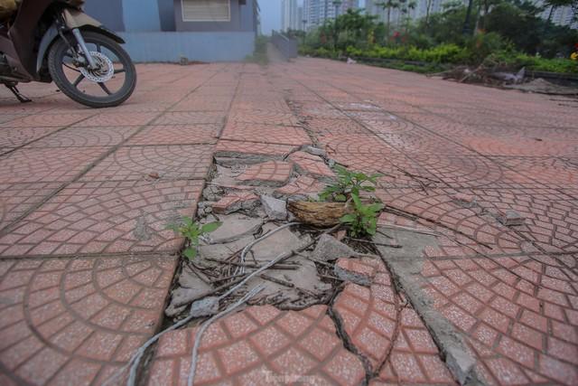 Lộ nguyên nhân khu chung cư tọa lạc vị trí đắc địa ở Hà Nội bỏ hoang nhiều năm - Ảnh 6.