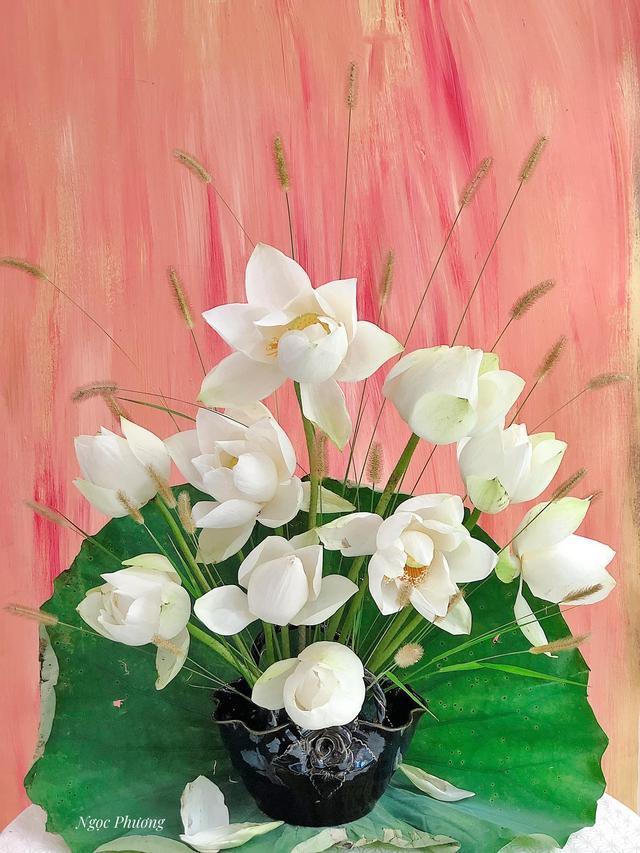 Mê mẩn hương hoa, mẹ đảm Hà Nội kỳ công đặt mua loài sen Đế Vương tận xứ Huế và tiết lộ bí kíp chơi hoa bền đẹp - Ảnh 11.