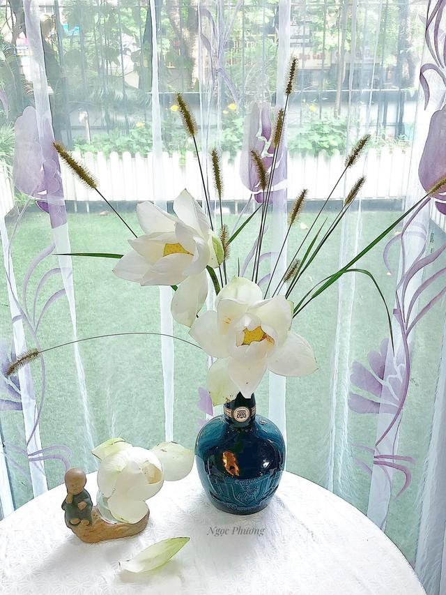 Mê mẩn hương hoa, mẹ đảm Hà Nội kỳ công đặt mua loài sen Đế Vương tận xứ Huế và tiết lộ bí kíp chơi hoa bền đẹp - Ảnh 12.