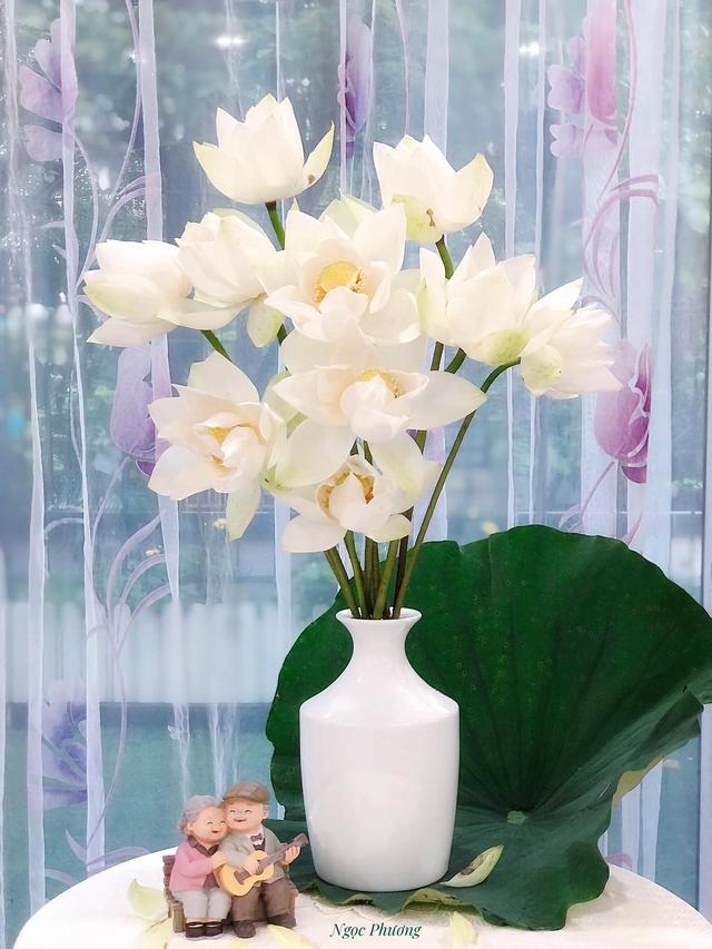 Mê mẩn hương hoa, mẹ đảm Hà Nội kỳ công đặt mua loài sen Đế Vương tận xứ Huế và tiết lộ bí kíp chơi hoa bền đẹp - Ảnh 13.