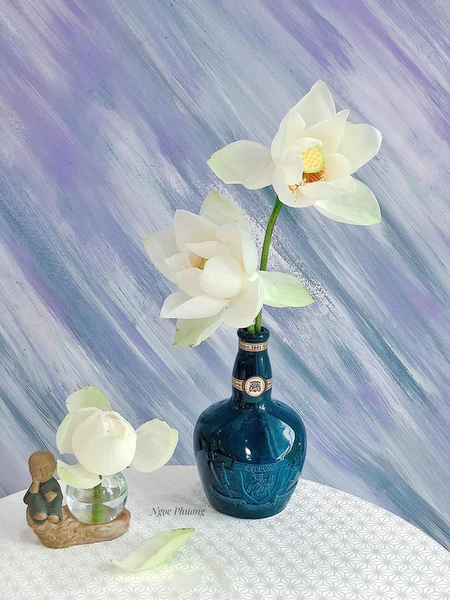 Mê mẩn hương hoa, mẹ đảm Hà Nội kỳ công đặt mua loài sen Đế Vương tận xứ Huế và tiết lộ bí kíp chơi hoa bền đẹp - Ảnh 14.