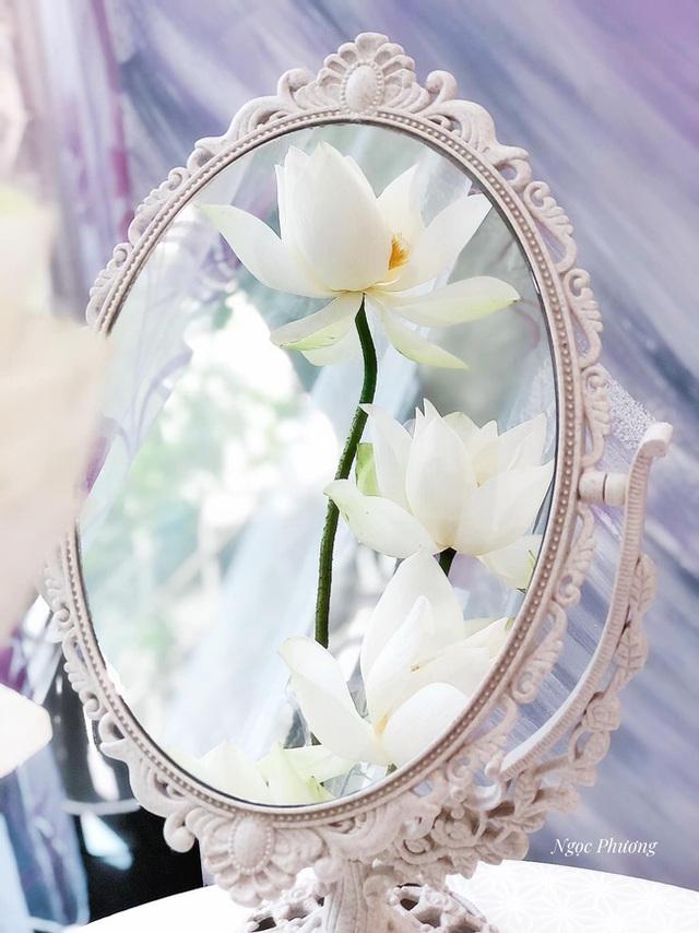 Mê mẩn hương hoa, mẹ đảm Hà Nội kỳ công đặt mua loài sen Đế Vương tận xứ Huế và tiết lộ bí kíp chơi hoa bền đẹp - Ảnh 4.