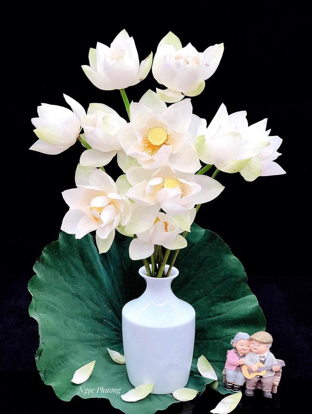 Mê mẩn hương hoa, mẹ đảm Hà Nội kỳ công đặt mua loài sen Đế Vương tận xứ Huế và tiết lộ bí kíp chơi hoa bền đẹp - Ảnh 6.