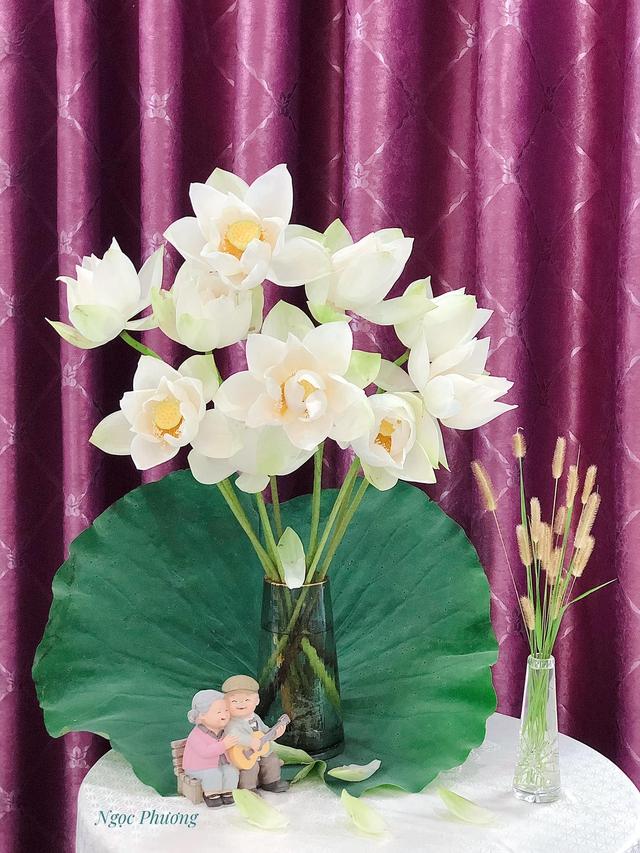 Mê mẩn hương hoa, mẹ đảm Hà Nội kỳ công đặt mua loài sen Đế Vương tận xứ Huế và tiết lộ bí kíp chơi hoa bền đẹp - Ảnh 7.