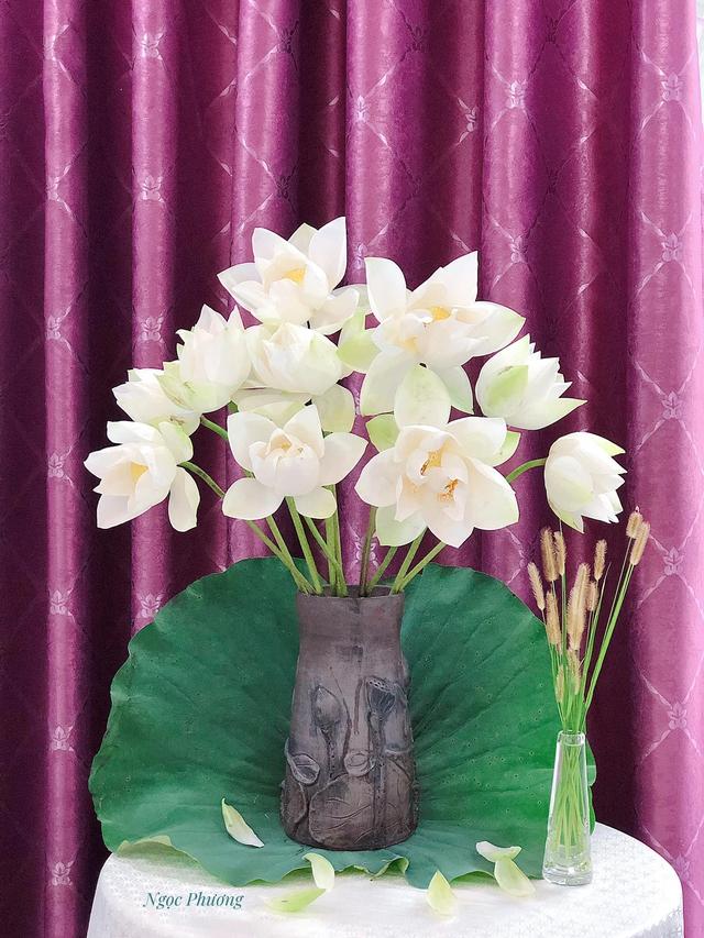 Mê mẩn hương hoa, mẹ đảm Hà Nội kỳ công đặt mua loài sen Đế Vương tận xứ Huế và tiết lộ bí kíp chơi hoa bền đẹp - Ảnh 8.