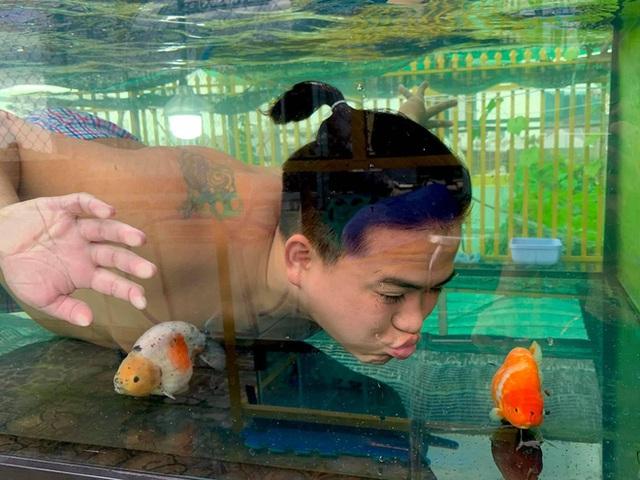 Nghỉ học từ lớp 11 để nuôi cá vàng trên sân thượng, chàng trai khoe doanh thu 100-200 triệu đồng/tháng - Ảnh 2.