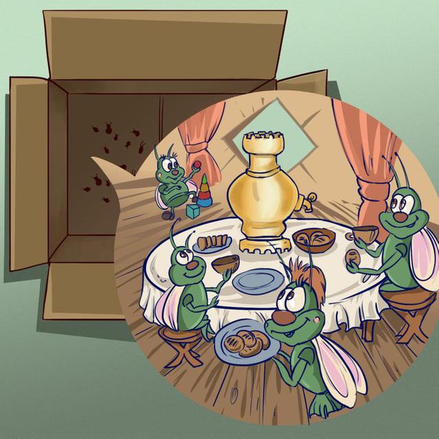 8 lỗi phổ biến vô tình đẩy nhà bạn thành nơi trú ẩn của côn trùng - Ảnh 4.