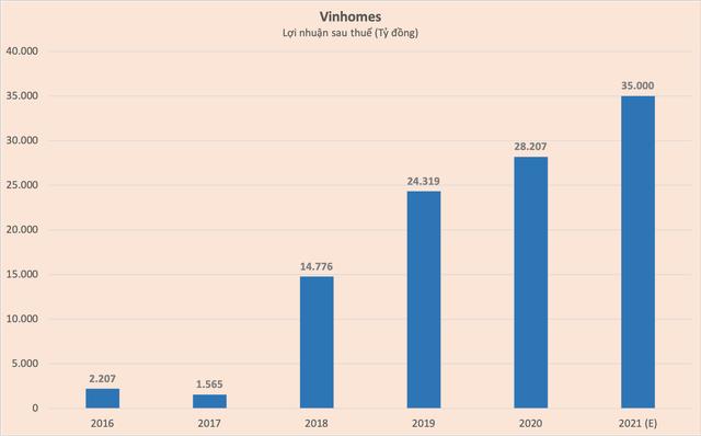 Vinhomes đặt mục tiêu lợi nhuận 1,5 tỷ USD, cây hái tiền của Tập đoàn Vingroup - Ảnh 1.