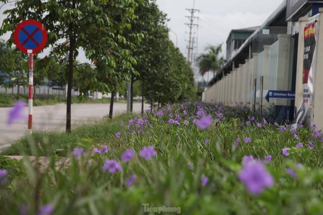 Hình ảnh đóng cửa các khu công nghiệp ở tỉnh Bắc Giang  - Ảnh 10.