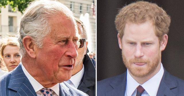 Chỉ trích cách dạy con của cha đẻ, Harry bị đào lại quá khứ từng hết lời ca tụng Thái tử Charles, chứng tỏ sự dối gian của anh - Ảnh 1.