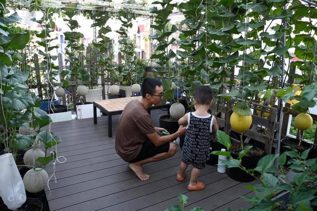 Ngắm vườn dưa lưới vạn người mê giữa lòng thành phố: Chẳng cần nhà to, nội thất sang trọng, khu vườn xanh mát này là đủ để ai cũng ước ao - Ảnh 4.