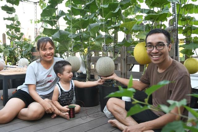 Ngắm vườn dưa lưới vạn người mê giữa lòng thành phố: Chẳng cần nhà to, nội thất sang trọng, khu vườn xanh mát này là đủ để ai cũng ước ao - Ảnh 3.