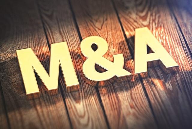 """M&A đang dần """"trỗi dậy"""" - Ảnh 1."""