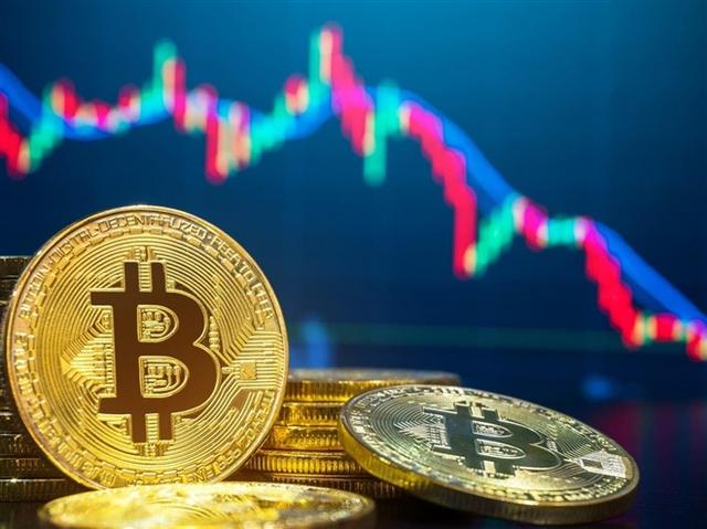 Sự giống nhau kỳ lạ giữa Bitcoin và xác con cá mập nằm trong bể foocmôn - Ảnh 2.