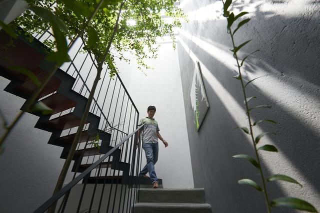 Thiết kế diện tích giếng trời bao nhiêu là đủ cho nhà phố xanh mát? - Ảnh 3.