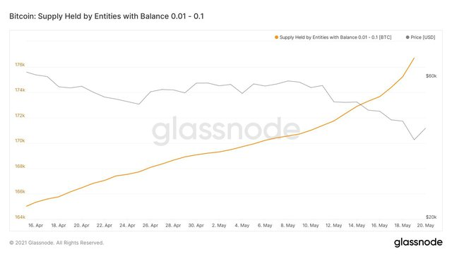 Cá con, cá mập đua nhau bắt đáy Bitcoin - Ảnh 1.