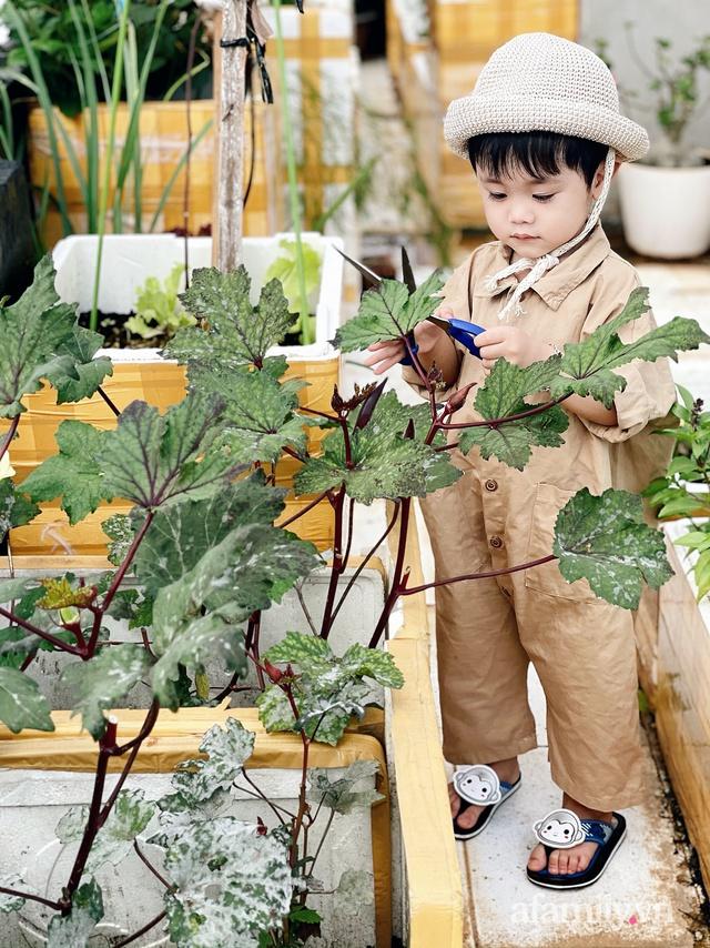 Vườn rau trong thùng xốp với đủ loại cây trái của mẹ 9x trồng cho con thưởng thức ở Buôn Ma Thuột - Ảnh 7.