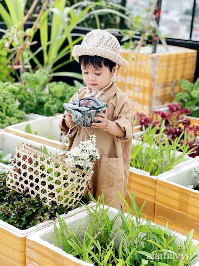 Vườn rau trong thùng xốp với đủ loại cây trái của mẹ 9x trồng cho con thưởng thức ở Buôn Ma Thuột - Ảnh 8.