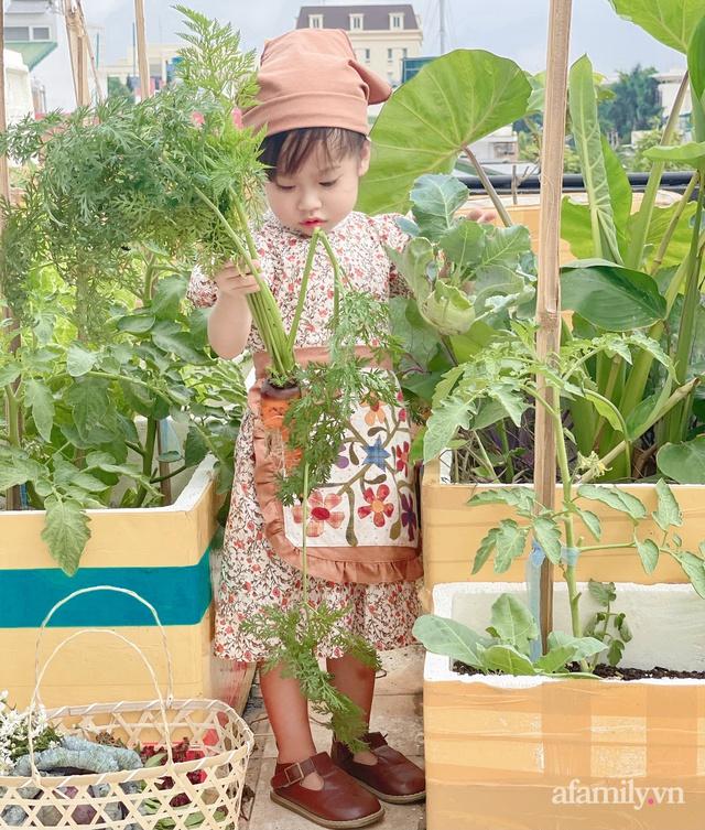 Vườn rau trong thùng xốp với đủ loại cây trái của mẹ 9x trồng cho con thưởng thức ở Buôn Ma Thuột - Ảnh 9.