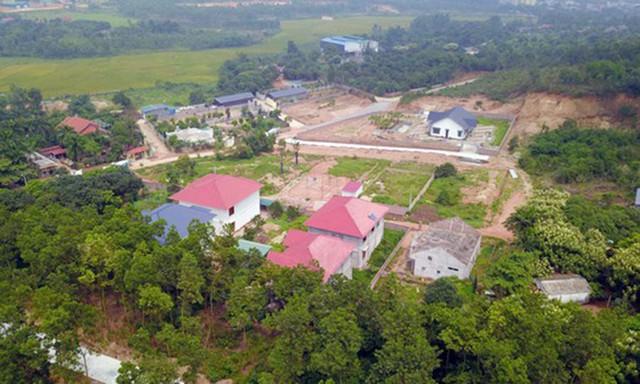 Phó Thủ tướng 'lệnh' xử lý dứt điểm việc xây biệt thự trên đất rừng ở Vĩnh Phúc - Ảnh 2.
