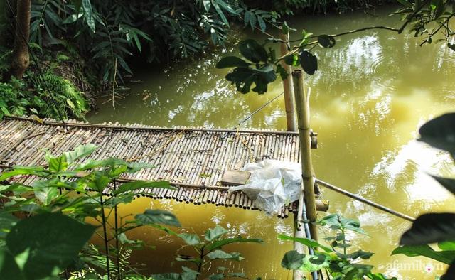 Khu vườn đậm chất thơ bình yên như cổ tích khiến hàng nghìn người mơ ước của cô gái rời Hà Nội về quê - Ảnh 14.