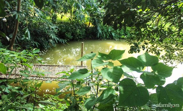 Khu vườn đậm chất thơ bình yên như cổ tích khiến hàng nghìn người mơ ước của cô gái rời Hà Nội về quê - Ảnh 16.