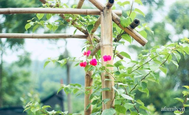 Khu vườn đậm chất thơ bình yên như cổ tích khiến hàng nghìn người mơ ước của cô gái rời Hà Nội về quê - Ảnh 22.