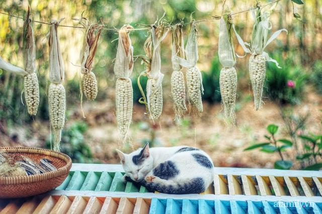 Khu vườn đậm chất thơ bình yên như cổ tích khiến hàng nghìn người mơ ước của cô gái rời Hà Nội về quê - Ảnh 43.
