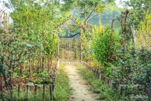 Khu vườn đậm chất thơ bình yên như cổ tích khiến hàng nghìn người mơ ước của cô gái rời Hà Nội về quê - Ảnh 7.