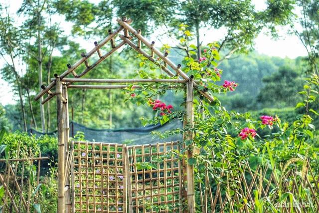 Khu vườn đậm chất thơ bình yên như cổ tích khiến hàng nghìn người mơ ước của cô gái rời Hà Nội về quê - Ảnh 8.