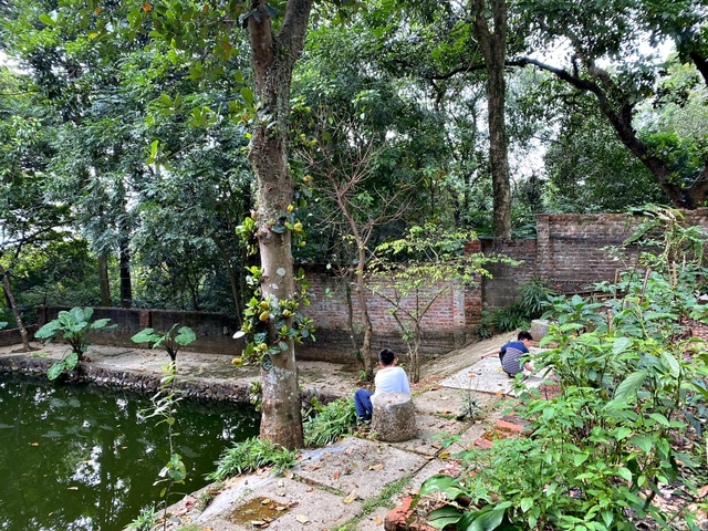 Mê mẩn với căn nhà second-home đẹp đến phát thèm tại ngoại ô Hà Nội, lộ bí quyết nhà đẹp quanh năm chỉ với 0 đồng của chủ nhà - Ảnh 15.