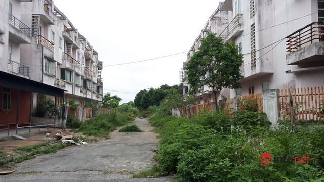 Khu đô thị ma la liệt biệt thự, nhà không người hoang vu ở Hà Nội - Ảnh 2.