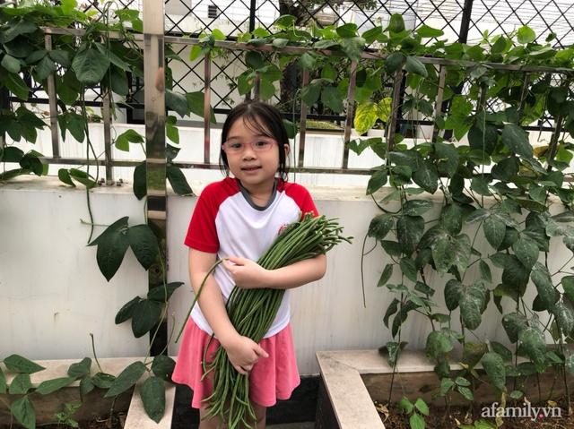 Vườn rau quả sạch 100m² trên mái nhà của mẹ 3 con ở Hà Nội - Ảnh 15.
