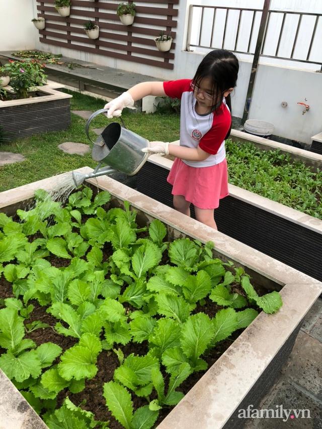 Vườn rau quả sạch 100m² trên mái nhà của mẹ 3 con ở Hà Nội - Ảnh 24.