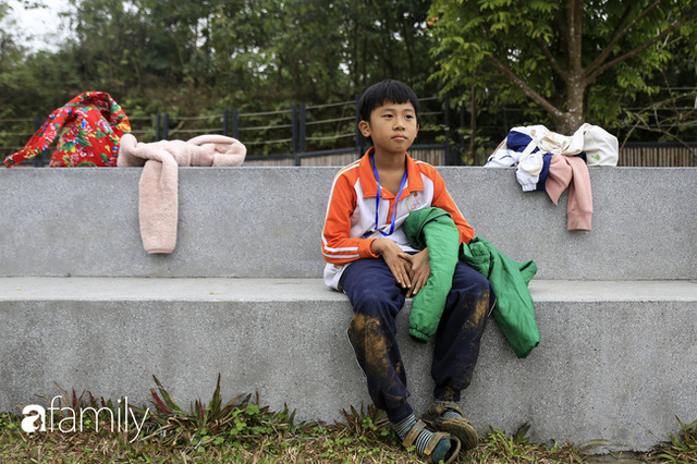 Hà Nội có 1 ngôi trường với những con đường quanh co rợp bóng cây: Bài thi không chấm điểm 10, dạy học theo nguyên tắc nương theo trẻ - Ảnh 10.
