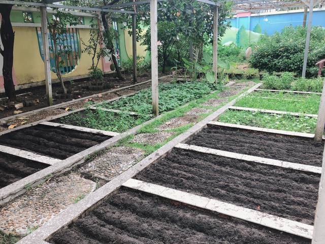Mẹ Sài Gòn review trường mầm non ai nghe cũng mê: Trường có vườn rau, hồ cá, bé được học nhiều kỹ năng nhưng học phí thì dưới 2 triệu đồng - Ảnh 15.