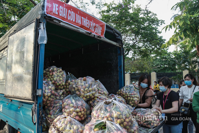 Người Hà Nội đội nắng nóng, nườm nượp chung tay giải cứu vải Bắc Giang hỗ trợ người dân vùng dịch - Ảnh 5.