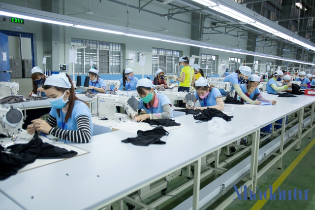 Vùng Đông Quảng Nam sẽ là động lực cho dải đất miền Trung - Ảnh 1.