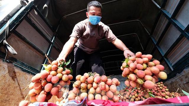 Vải thiều Bắc Giang được bán với giá 20.000 đồng/kg ở Thủ đô - Ảnh 1.