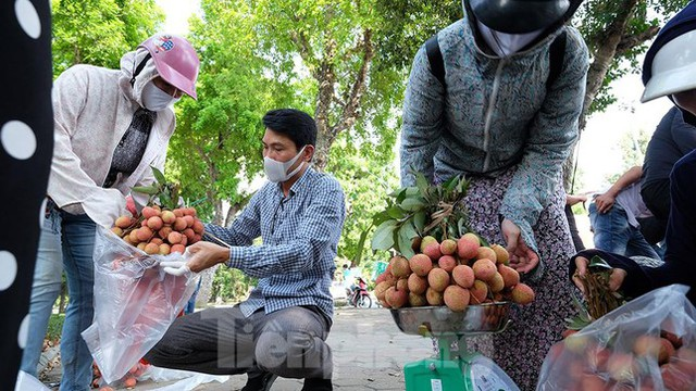 Vải thiều Bắc Giang được bán với giá 20.000 đồng/kg ở Thủ đô - Ảnh 11.