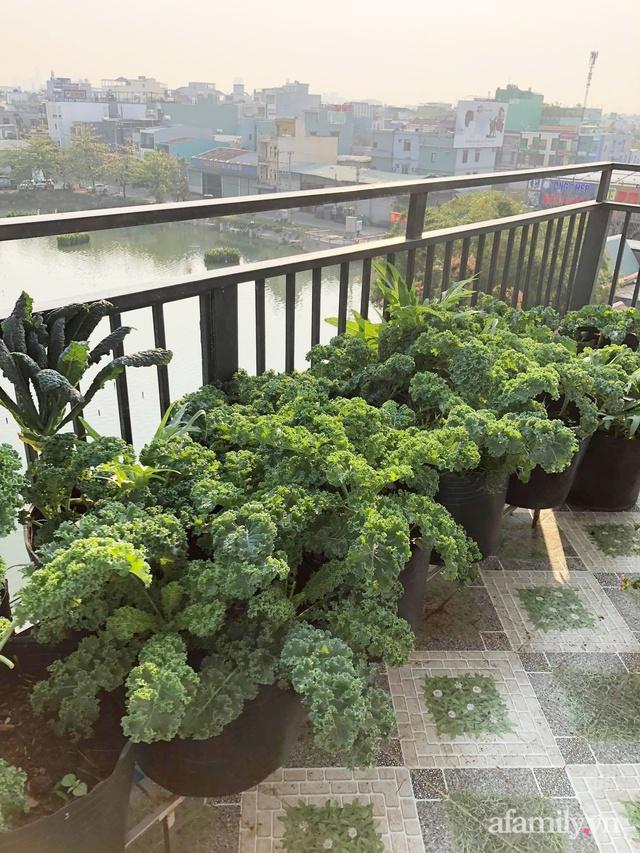 Sân thượng 100m² xanh tươi rau quả sạch của mẹ đảm ở Đà Nẵng - Ảnh 16.