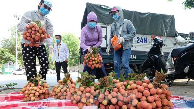 Vải thiều Bắc Giang được bán với giá 20.000 đồng/kg ở Thủ đô - Ảnh 5.