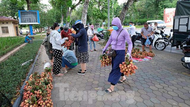 Vải thiều Bắc Giang được bán với giá 20.000 đồng/kg ở Thủ đô - Ảnh 7.
