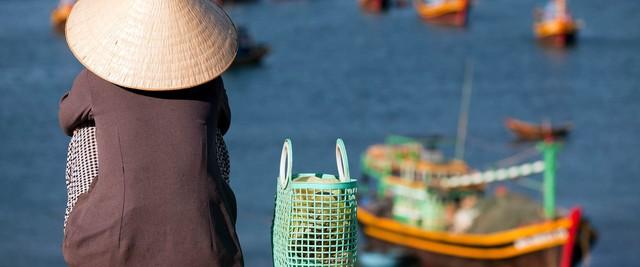 PGS.TS Trần Đình Thiên: Việt Nam không phải, không thể là mảnh đất dành cho các nhà đầu tư kém cỏi, ngu dốt, kinh doanh lỗ triền miên - Ảnh 3.