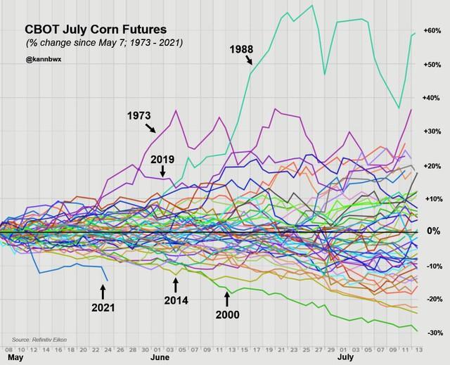 Sức nóng của thị trường ngô chưa dịu đi dù giá vừa giảm mạnh - Ảnh 5.